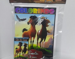 kit de colorir spirit