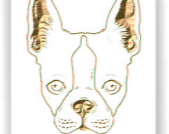 Quadro - Boston Terrier