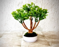Bonsai Presente (artificial)