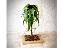 Bonsai Incanto (artificial)
