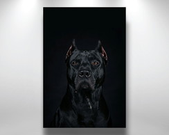 Placa Decorativa Pitbull