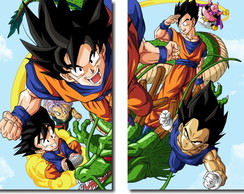 Quadros Decorativos Dragon Ball Z