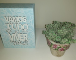 Cubo decorativos