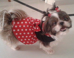 kit 2 vestidos Minnie P, M para Pet