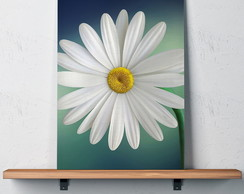 Quadro Decorativo 30x40 Flor Margarida