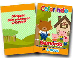 revista colorir 20x14