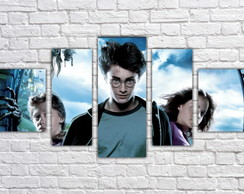Quadro Decorativo Harry Potter Filme Mosaico 5 Pçs 10