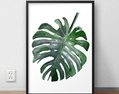 "pôster ""monstera"""