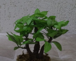 Mini Bonsai decorativo artificial