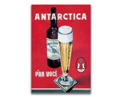 Placa Decorativa MDF - Antartica