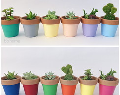 Vasinhos com plantas | home decor