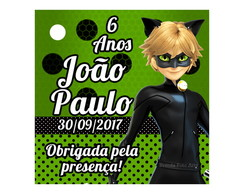 Tag Cat Noir Miraculous