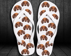Chinelo Dachshund (Design)