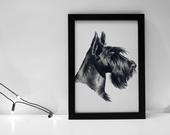 Quadro Scottish Terrier
