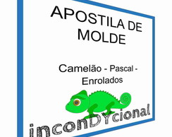 Apostila Digital com molde do Pascal