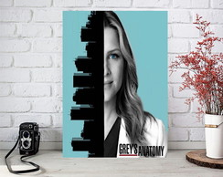Placas Decorativas Quadro Grey´s Anatomy Arizona
