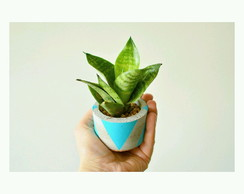 Mini vaso concreto+planta natural