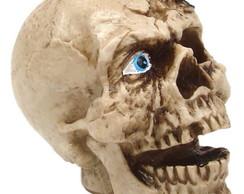 ... cranio com escorpiao na cabeça em resina eb45962be47