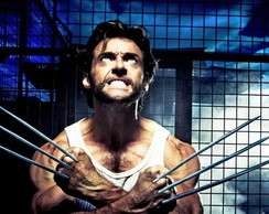 Painel 2x1 Wolverine