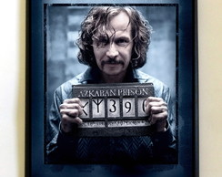 Quadro Harry Potter (Sirius Black)
