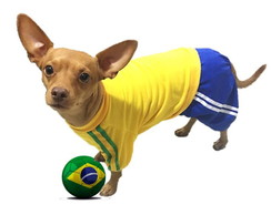 Uniforme Pet Copa do Mundo
