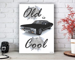 Placa Decorativa Old is Cool Car Tamanho M