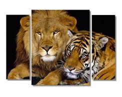 ... Quadros Decorativos Leão Tigre Para Salas Em Canvas 90x65 ceee8f5fdb
