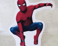 Display Homen Aranha