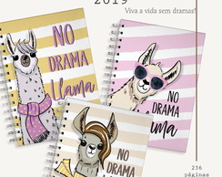 Planner Lhama 2019 ou Permanente