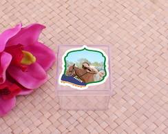 ... Caixinha de acrílico com adesivo com foto- Brasil chuteira 7a9405dcc12b6