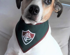Bandana pet time Fluminense