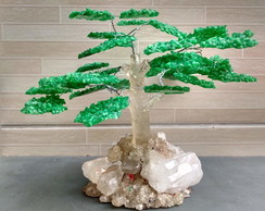 Bonsai Pedra Verde