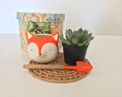 Kit jardinagem fox