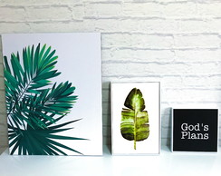 Conjunto 3 Quadro Decorativo Planta Decor Tumblr