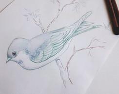Desenho Colorido Passarinho A4 No Elo7 Pinturas Em Aquarelas E