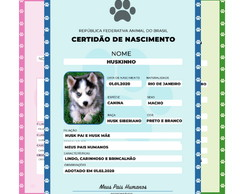 Certidão de Nascimento Pet / Animal