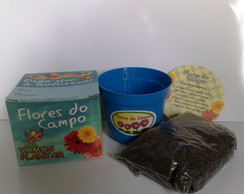 Mini kit vamos plantar Flores do Campo