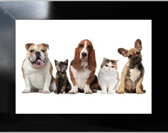 **QUADRO DECORATIVO - DOGS AND CATS 2
