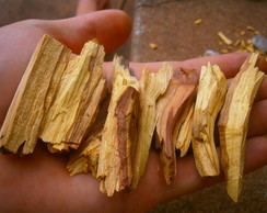 Palo Santo (Incenso Natural)