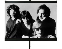 * MINI BANNER - THE DOORS 4