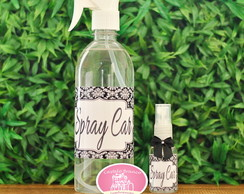 Home Spray /Spray Car 1 Litro