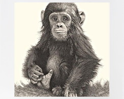 QUADRO DECOR - MONKEY
