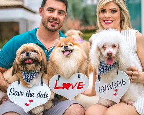Placas Save the Date p/ 3 PETs Bca