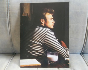 Quadro Decorativo James Dean