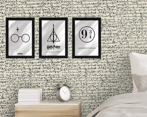 Conjunto de Quadros do Harry Potter