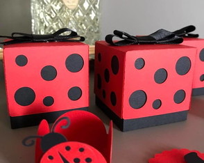 Kit Promocional Lady Bug!!!