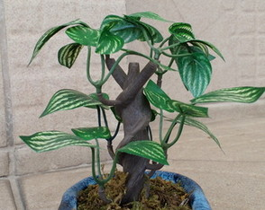 Bonsai Caracol 001 artificial.