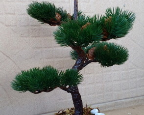 Bonsai Pinha artificial.