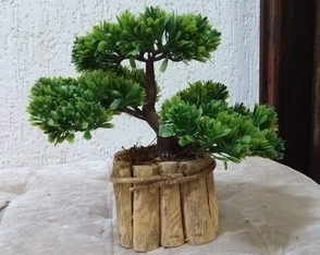 Lindo Bonsai artificial.
