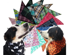 Kit 5 Bandana Cães Pet Shop Lenço DIA DAS BRUXAS HALLOWEEN